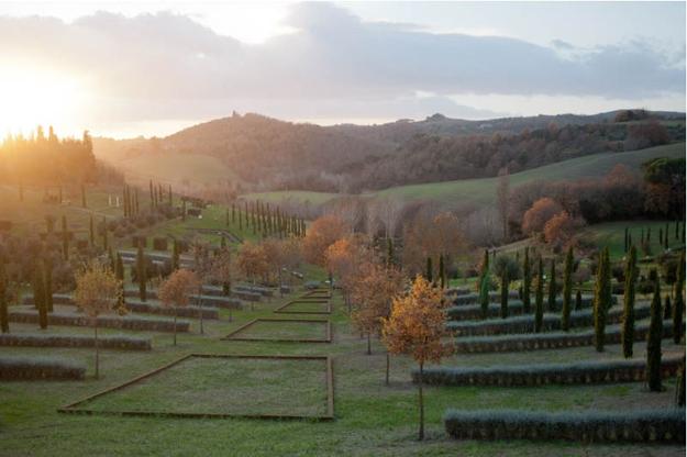 02 -Gardens in Tuscany ragnaia - open field
