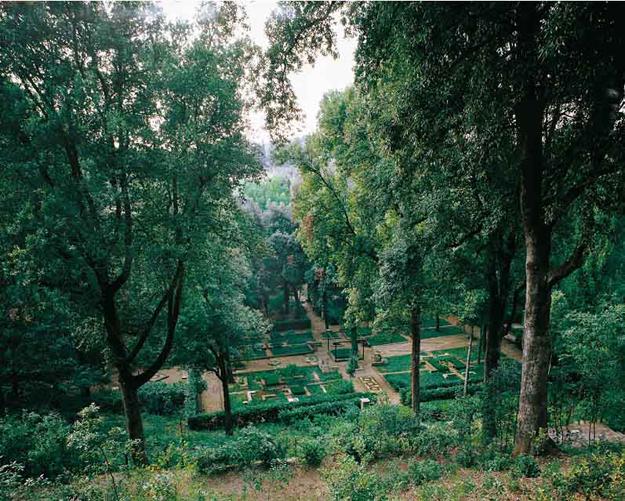 03 -Gardens in Tuscany Ragnaia wood 1