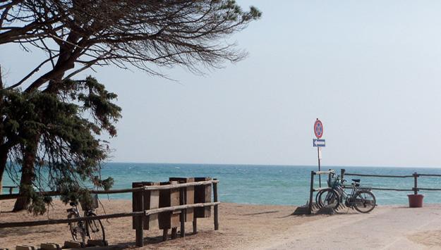 the beach of parco della maremma