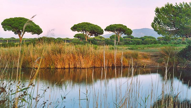 national parc of the maremma