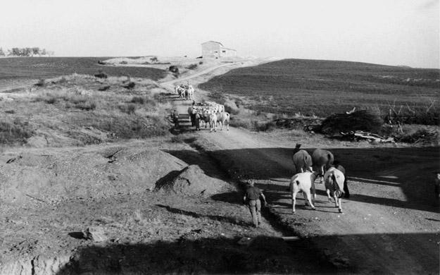 Landarbeit in der Toskana zu alten Zeiten