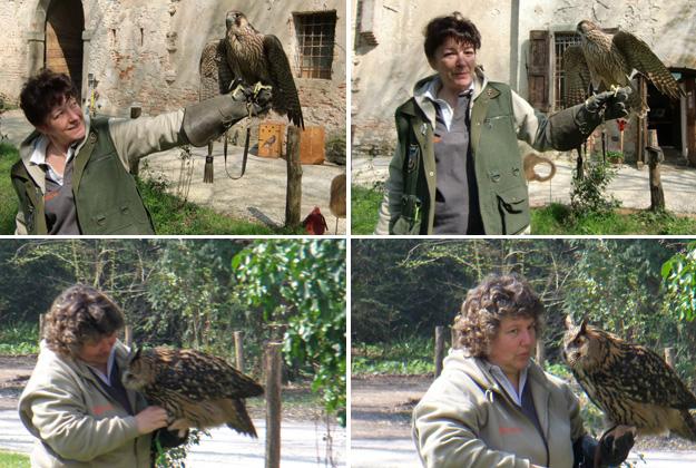 Stefania and Antonella, two friendly, seasoned falconers.