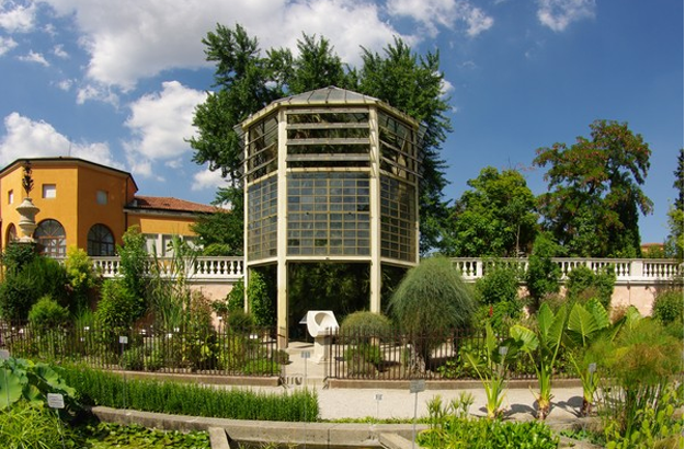 Goethe's Palm Greenhouse
