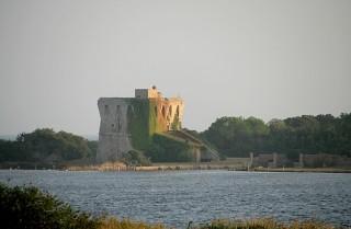 Torre di buranaccio