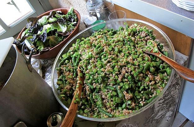 Farro (spelt) agli asparagi