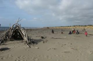 Hier, auf einem der Sandstrände, hat jemand aus Treibholz eine Hütte gebaut.
