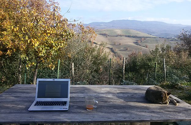 The breathtaking view from Katja's writing table, in her olive grove.