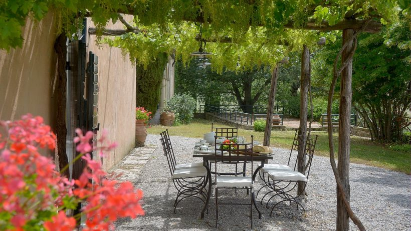 The pergola in front of the house, covered in vine