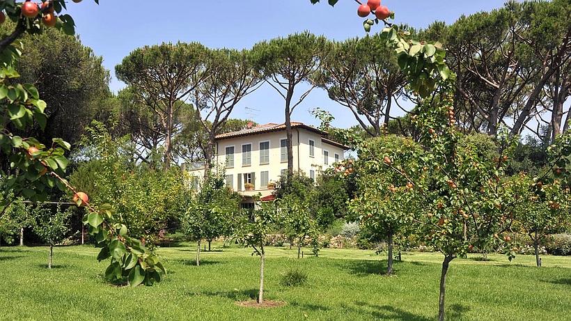 Villa Tombolino in garden of fruit trees