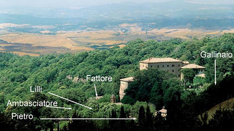 The Vivo d'Orcia estate: the houses for rent are grouped around the castle. The Val d'Orcia spreads below.