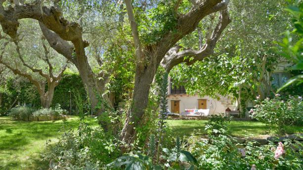 Ferienhaus mit grossem Flair, Pool und aussergewöhnlichem Garten an